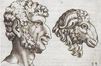 """Historical Anatomies, Giambattista della Porta """"De humana physiognomia"""", 1586"""